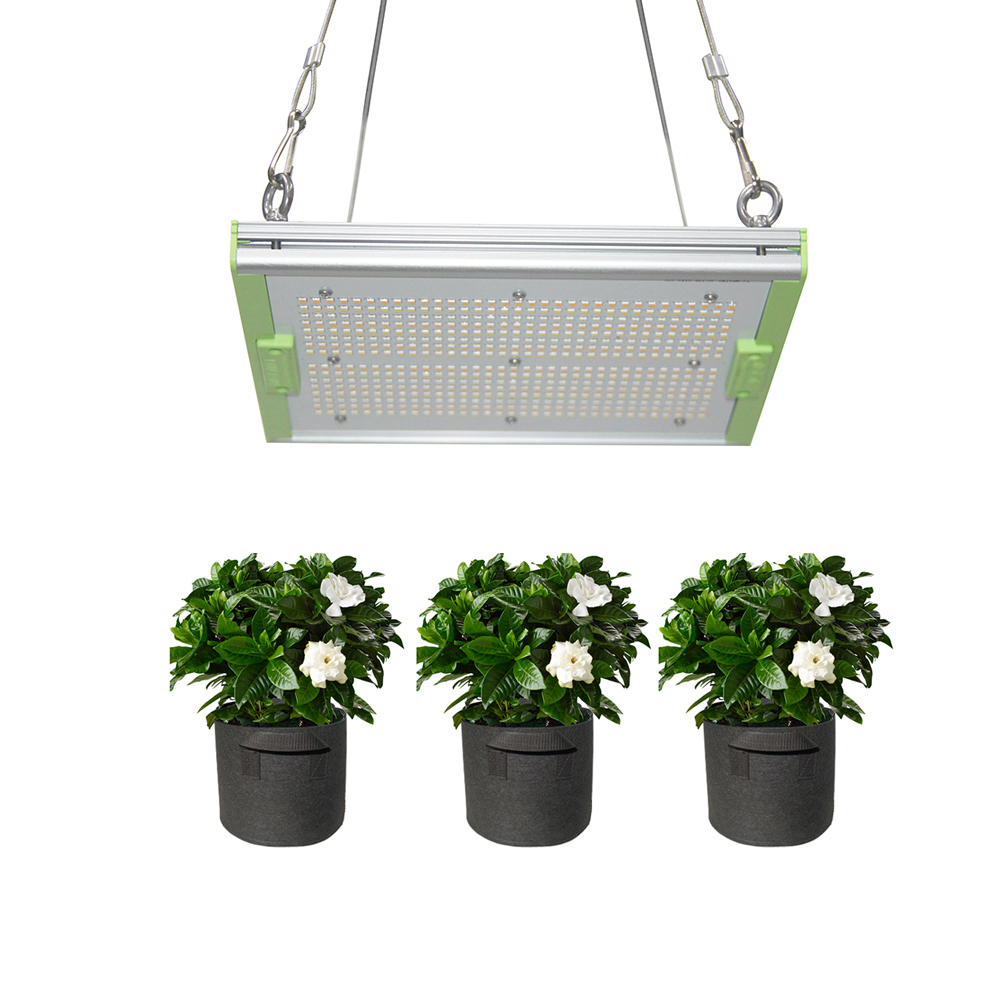 Microgreens led horticulture lighting,Aglare 150W led grow light