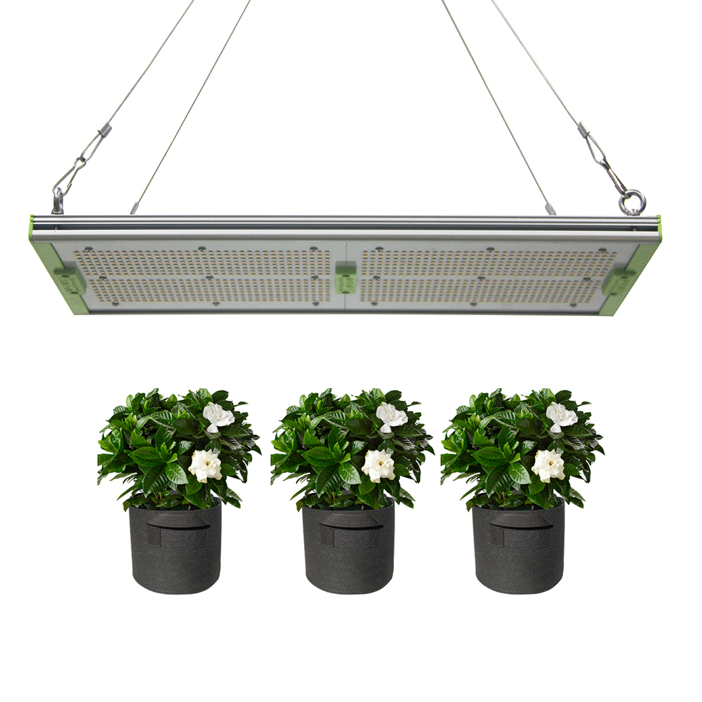 High PPFD grow lights for indoor tent, 240W full spectrum led boards