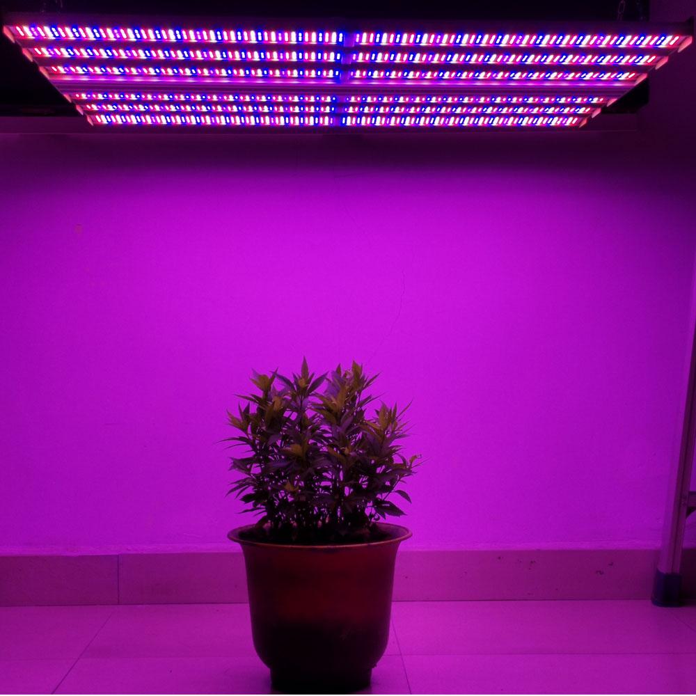 plant grow lights Aglare