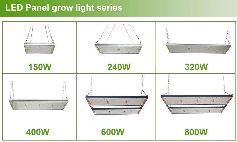 Full spectrum grow light led